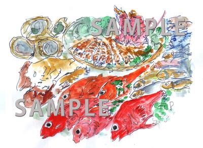 b表紙イラスト魚.jpg